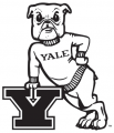 Yale Bulldogs 1972-1997 Primary Logo iron on transfer