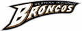 Western Michigan Broncos 1998-2015 Wordmark Logo iron on transfer