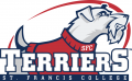 St. Francis Terriers 2011-2013 Primary Logo iron on transfer