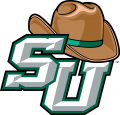 Stetson Hatters 2008-2017 Primary Logo iron on transfer