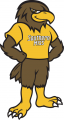 Southern Miss Golden Eagles 2003-Pres Mascot Logo 01 decal sticker