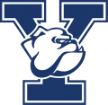 Yale Bulldogs 1998-Pres Primary Logo iron on transfer