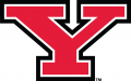 Youngstown State Penguins 2006-Pres Primary Logo iron on transfer