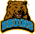 UCLA Bruins 2004-Pres Alternate Logo decal sticker
