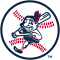 Cleveland Indians 1973-1978 Alternate Logo iron on transfer