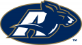 Akron Zips 2002-Pres Secondary Logo decal sticker