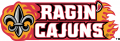 Louisiana Ragin Cajuns 2000-Pres Wordmark Logo 04 iron on transfer