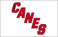 Carolina Hurricanes 2019 20-Pres Jersey Logo decal sticker