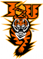 Idaho State Bengals 1997-2018 Alternate Logo 04 iron on transfer