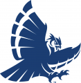 Rice Owls 1997-2009 Secondary Logo 01 iron on transfer