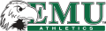 Eastern Michigan Eagles 2003-2012 Alternate Logo 01 iron on transfer
