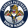 Florida Panthers iron on transfer