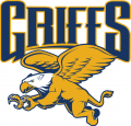 Canisius Golden Griffins 2006-Pres Alternate Logo 02 iron on transfer