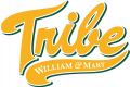 William and Mary Tribe 2016-2017 Alternate Logo iron on transfer