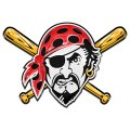 pittsburgh pirates crystal logo iron on sticker