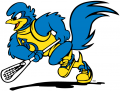 Delaware Blue Hens 1999-Pres Mascot Logo 09 decal sticker