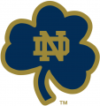 Notre Dame Fighting Irish 1994-Pres Alternate Logo 15 decal sticker