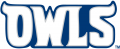 Rice Owls 1997-2009 Wordmark Logo iron on transfer