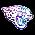 galaxy jacksonville jaguars iron on stickers