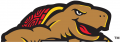I-M_Maryland Terrapins 1997-Pres Partial Logo decal sticker