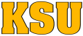 Kennesaw State Owls2000-2011 Wordmark Logo 02 decal sticker