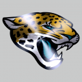 Jacksonville Jaguars Stainless steel logo iron on transfer