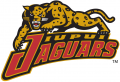 IUPUI Jaguars 1998-2007 Alternate Logo decal sticker