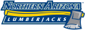 Northern Arizona Lumberjacks 2005-2013 Wordmark Logo 03 iron on transfer