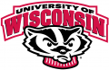 Wisconsin Badgers 2002-Pres Secondary Logo iron on transfer