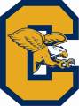 Canisius Golden Griffins 2006-Pres Alternate Logo iron on transfer
