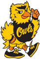 Kennesaw State Owls1992-2011 Mascot Logo decal sticker