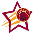 Miami Heat Basketball Goal Star decal sticker
