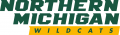 Northern Michigan Wildcats 2016-Pres Alternate Logo 04 decal sticker