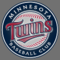 minnesota twins 2010-pres primary plastic effect logo iron on transfer