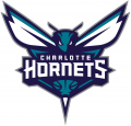 Charlotte Hornets 2015-Pres Primary Logo iron on transfer
