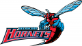 Delaware State Hornets 2004-Pres Alternate Logo iron on transfer