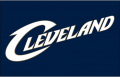Cleveland Cavaliers 2005-2010 Jersey Logo iron on transfer
