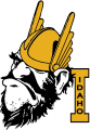 Idaho Vandals 1966-1972 Primary Logo iron on transfer