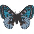 Butterfly DIY iron on stickers (heat transfer) version 15