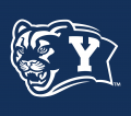 Brigham Young Cougars 2005-Pres Alternate Logo 02 iron on transfer