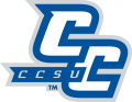 Central Connecticut Blue Devils 2011-Pres Alternate Logo 02 iron on transfer