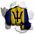 hulk BARBADOS Flag decal sticker
