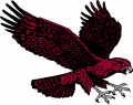 Maryland-Eastern Shore Hawks 2007-Pres Secondary Logo decal sticker