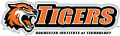 RIT Tigers 2004-Pres Secondary Logo iron on transfer