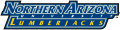 Northern Arizona Lumberjacks 2005-2013 Wordmark Logo 02 iron on transfer