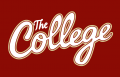 College of Charleston Cougars 2013-Pres Wordmark Logo 06 decal sticker