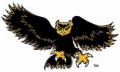 Kennesaw State Owls1992-2011 Alternate Logo 02 decal sticker