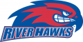 UMass Lowell River Hawks 2005-Pres Secondary Logo iron on transfer