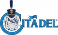 The Citadel Bulldogs 2000-Pres Primary Logo decal sticker