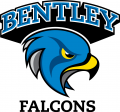 Bentley Falcons 2013-Pres Alternate Logo iron on transfer